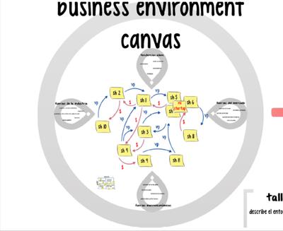 business environement CANVAS